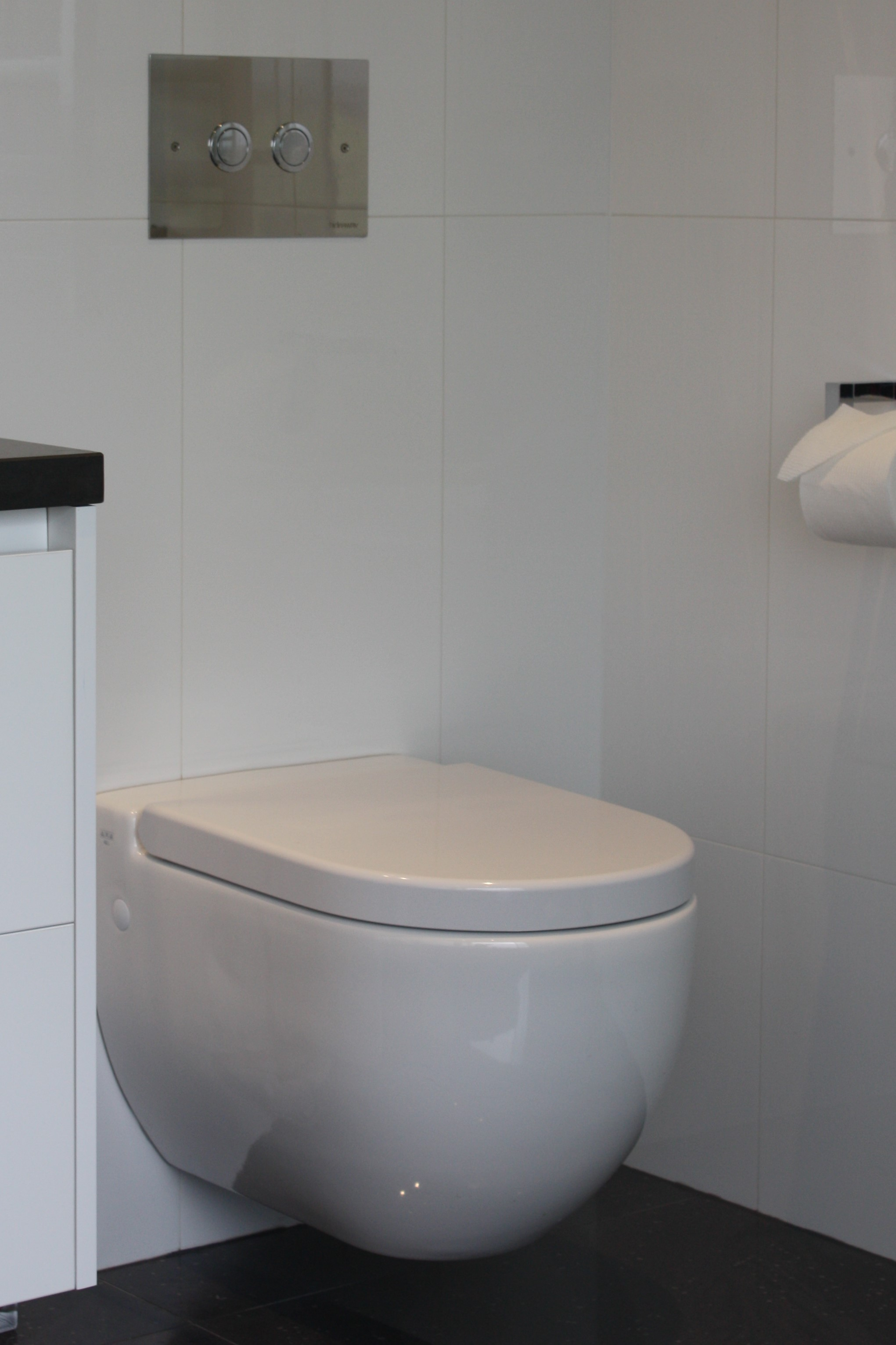 Toilets: All You Need to Know - Latand Bathroom Renovations
